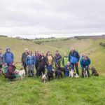 A walk in the countryside on our All About Dog weekend